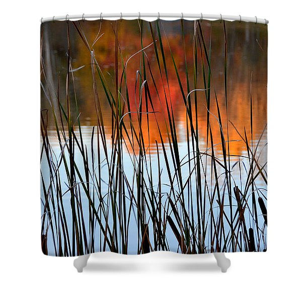 Lakeside Tales Shower Curtain