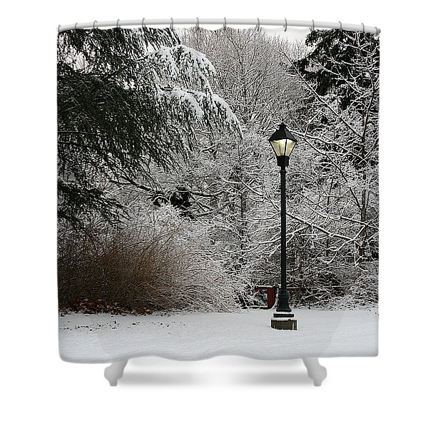 Lamp Post In Winter Shower Curtain