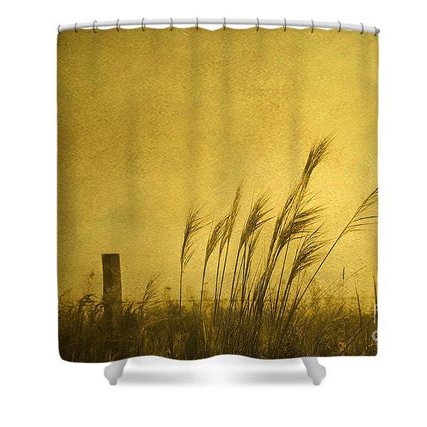 Land Of Stillness Shower Curtain