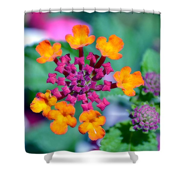 Lantana Shower Curtain