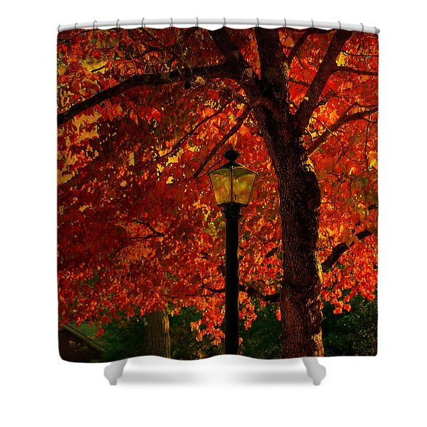 Lantern In Autumn Shower Curtain