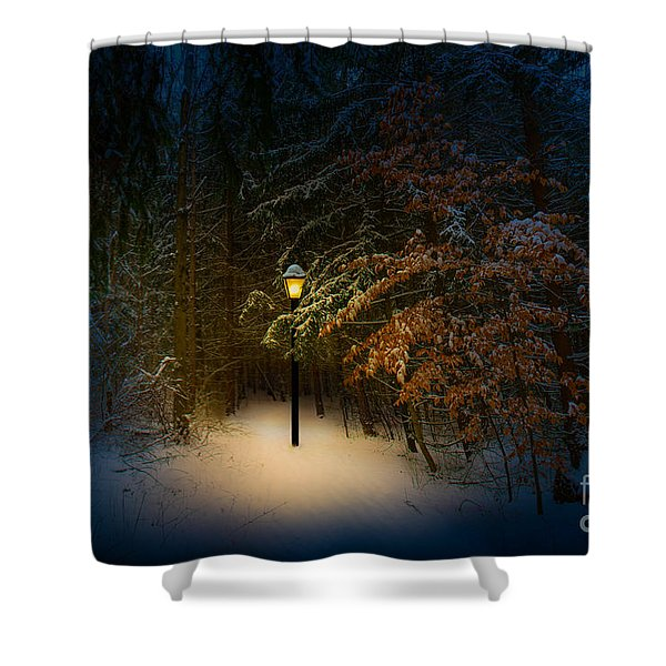 Lantern In The Wood Shower Curtain