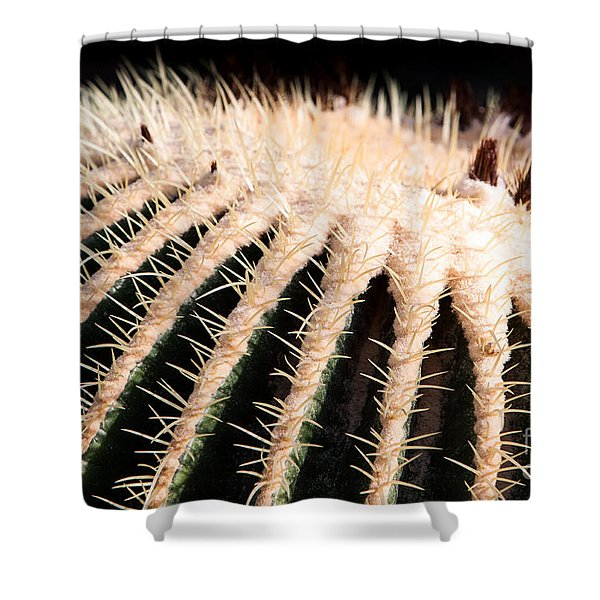 Shower Curtain featuring the photograph Large Cactus Ball by John Wadleigh