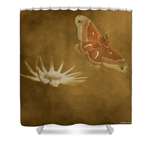 Last Flight Shower Curtain