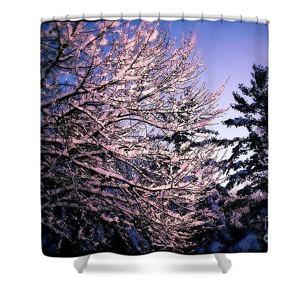Last Peek Of Winter Sun Shower Curtain