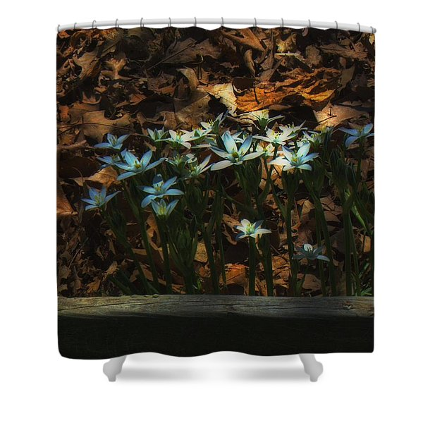 Last Year's Leaves Shower Curtain