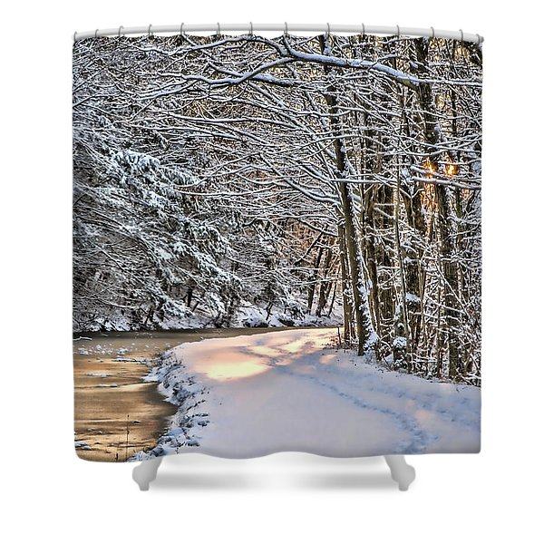 Late Afternoon In The Snow Shower Curtain