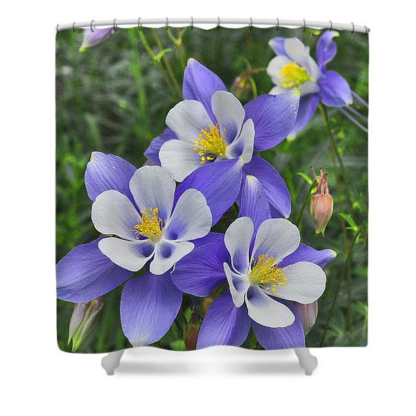 Shower Curtain featuring the digital art Lavender And White Star Flowers by Mae Wertz