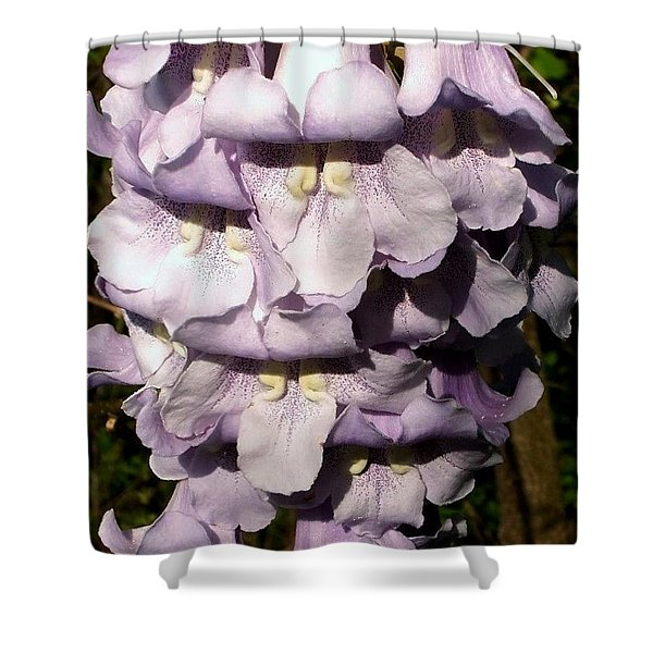 Lavender Princess Shower Curtain