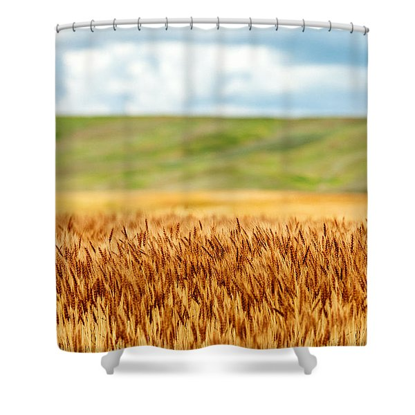 Layers Of Grain Shower Curtain