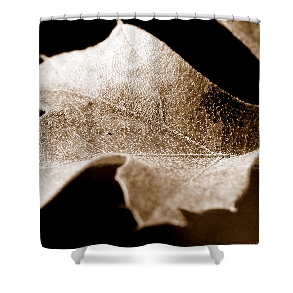 Leaf Collage 1 Shower Curtain