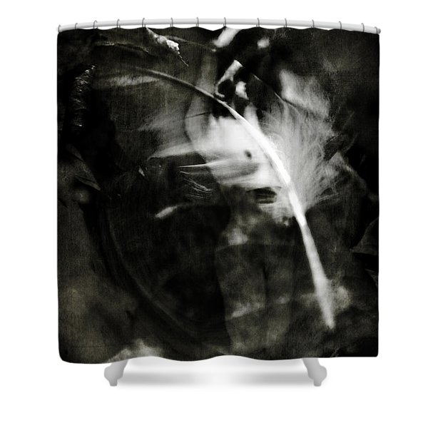 Leda And The Swan Shower Curtain