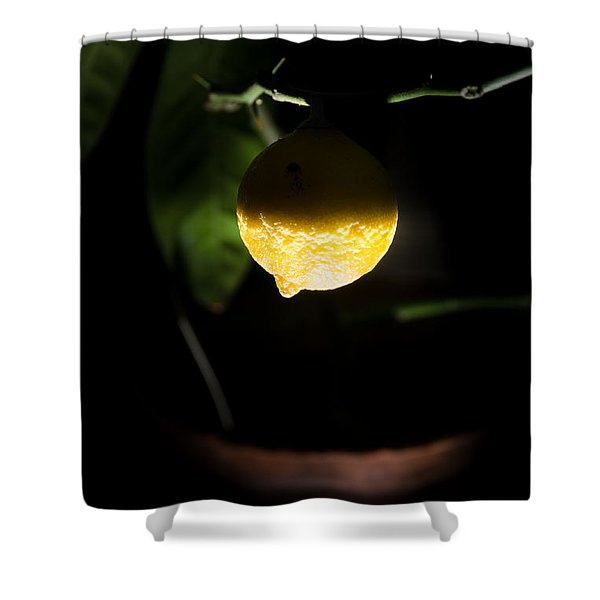 Lemon's Planet Shower Curtain