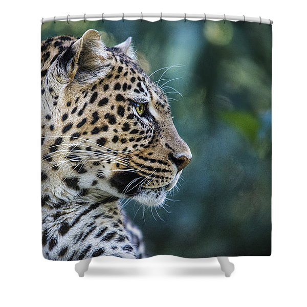 Leopard's Look Shower Curtain