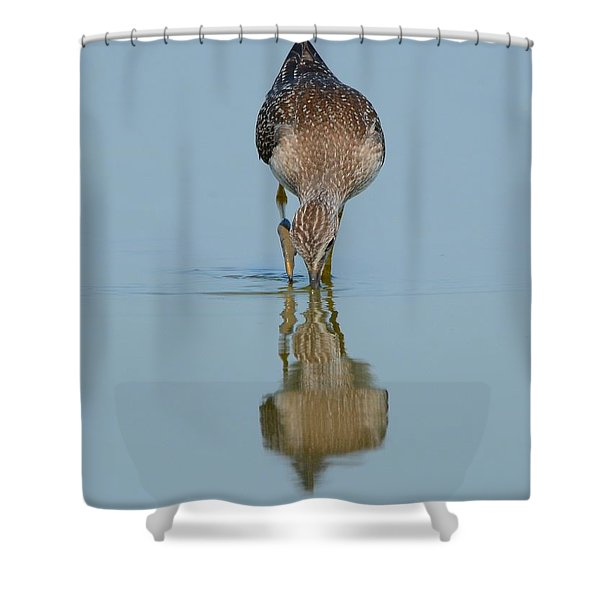 Lesser Yellowlegs Shower Curtain