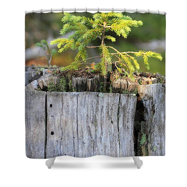 Life After Death Shower Curtain