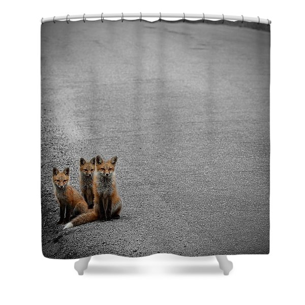 Life Is An Unknown Highway Shower Curtain