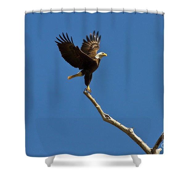 Lift Off Shower Curtain