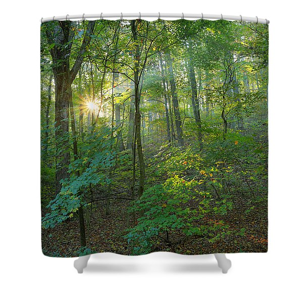 Light Up The Forest Shower Curtain