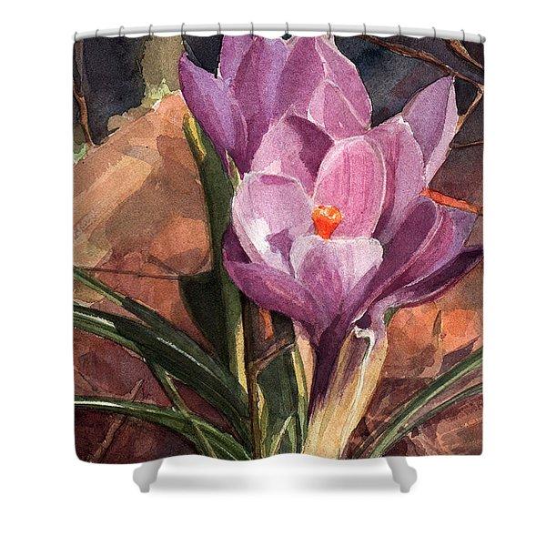 Lilac Crocuses Shower Curtain
