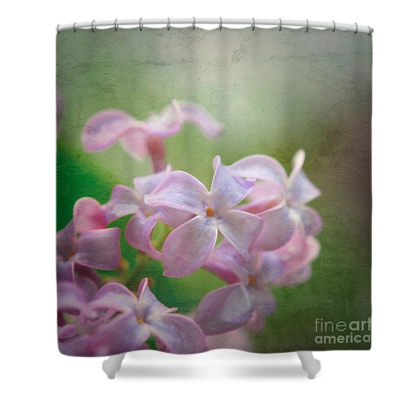 Lilac Dreaming  Shower Curtain