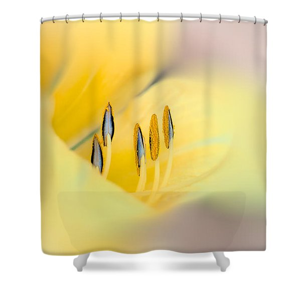 Lily Impressions Shower Curtain