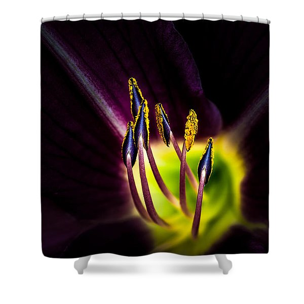 Lily Of The Forest Shower Curtain