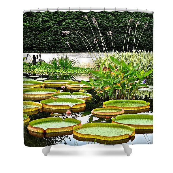 Lily Pad Garden Shower Curtain