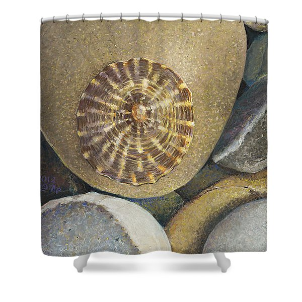 Limpet Shell Shower Curtain