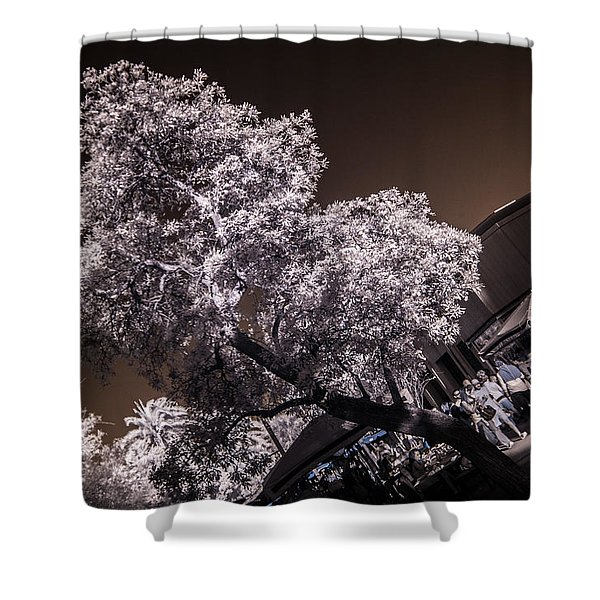 Lincoln Road Tree Shower Curtain