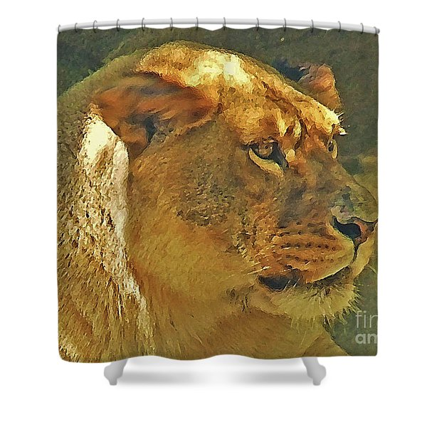 Lioness 2012 Shower Curtain