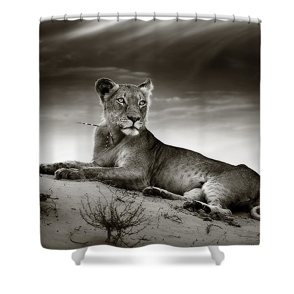 Lioness On Desert Dune Shower Curtain