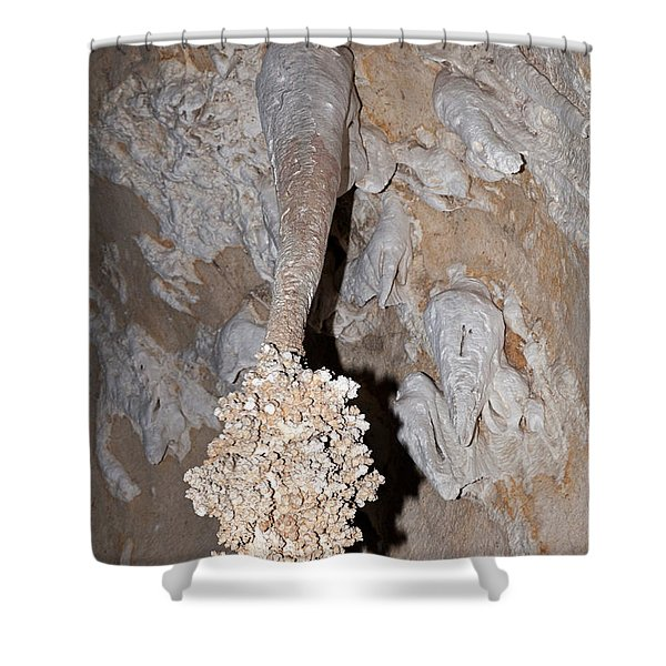 Lions Tail Carlsbad Caverns National Park Shower Curtain