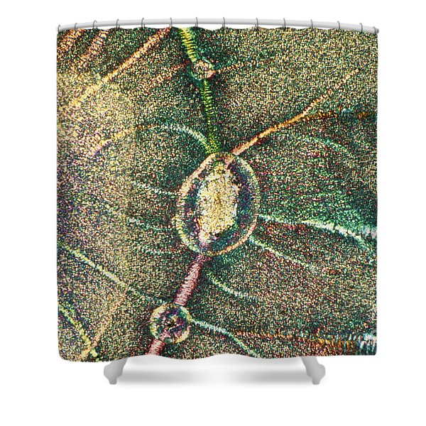 Liquid Crystals Shower Curtain