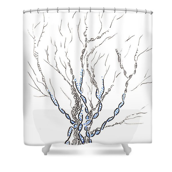 Little Dna Tree Shower Curtain
