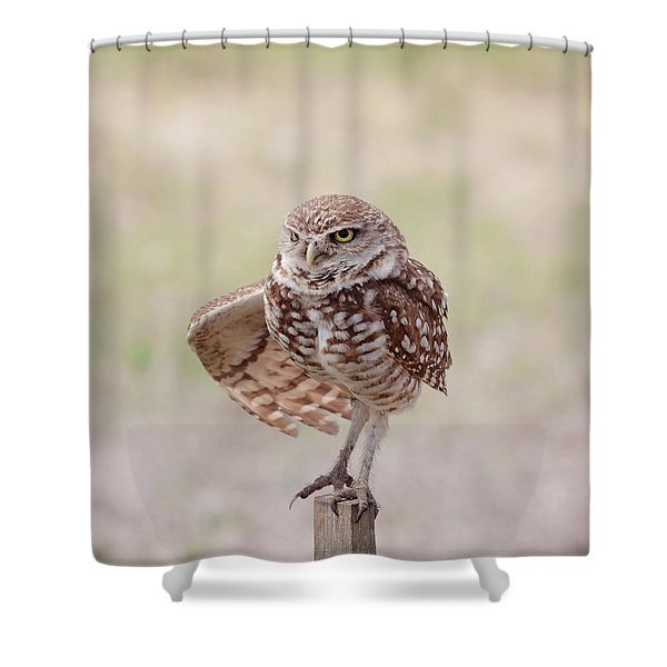 Little One Shower Curtain