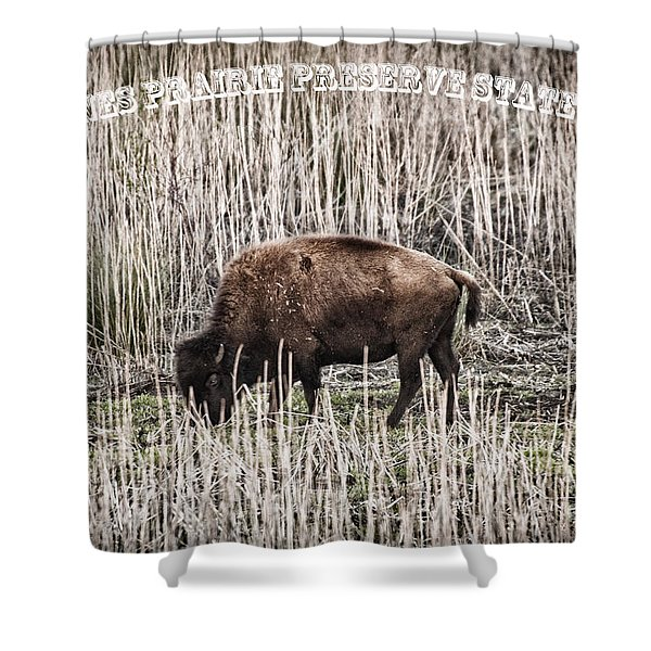 Lone Buffalo Shower Curtain