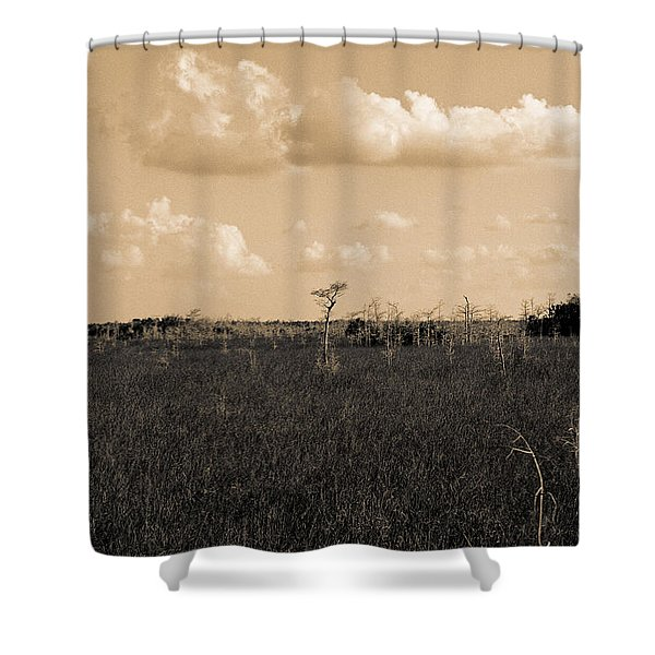 Lone Cypress Shower Curtain