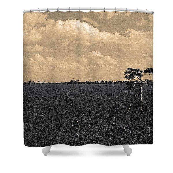 Lone Cypress II Shower Curtain