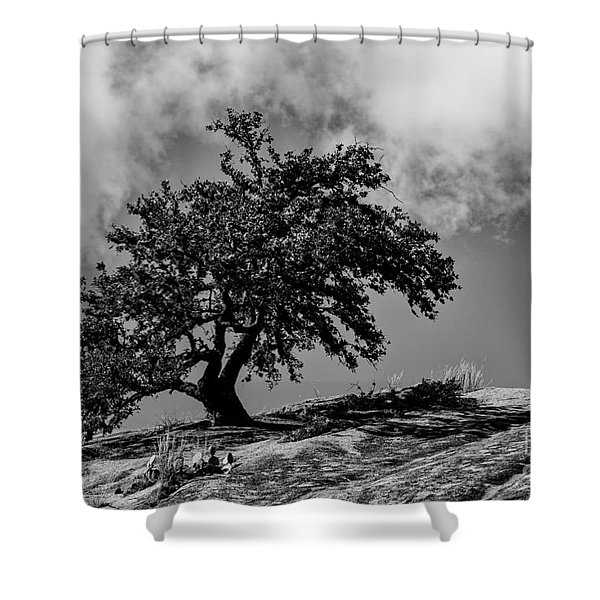 Lone Oak Atop Little Rock - Enchanted Rock State Natural Area Texas Hill Country Shower Curtain
