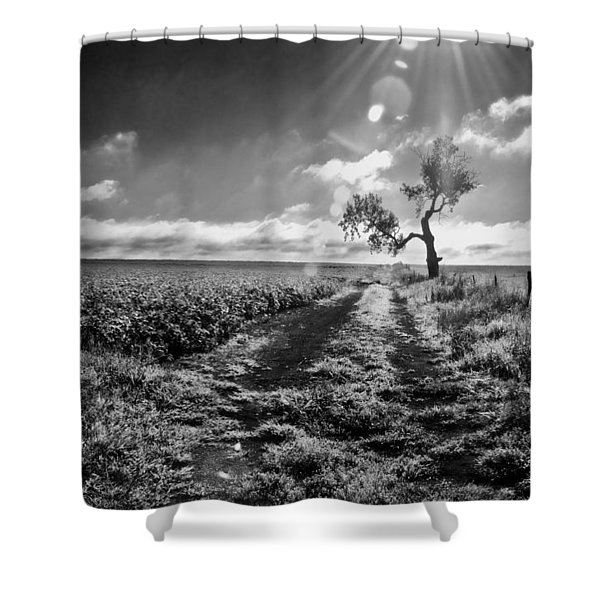 Lone Tree 3 Shower Curtain