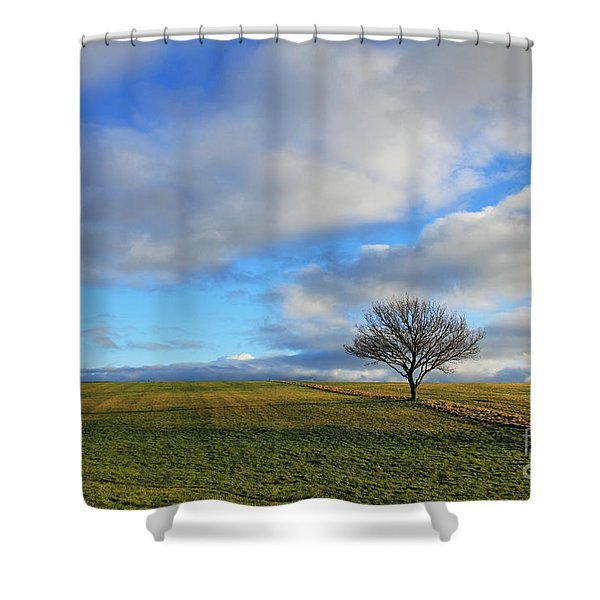 Lone Tree At Epsom Downs Uk Shower Curtain