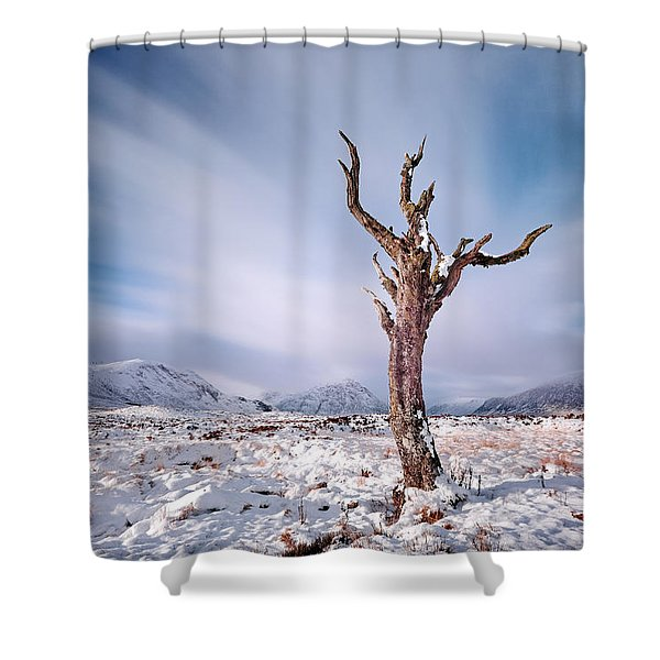 Lone Tree In The Snow Shower Curtain