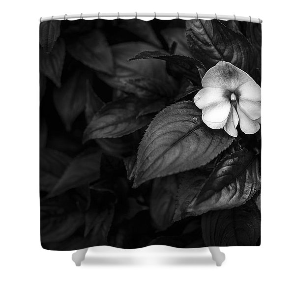 Lonely 1 Shower Curtain