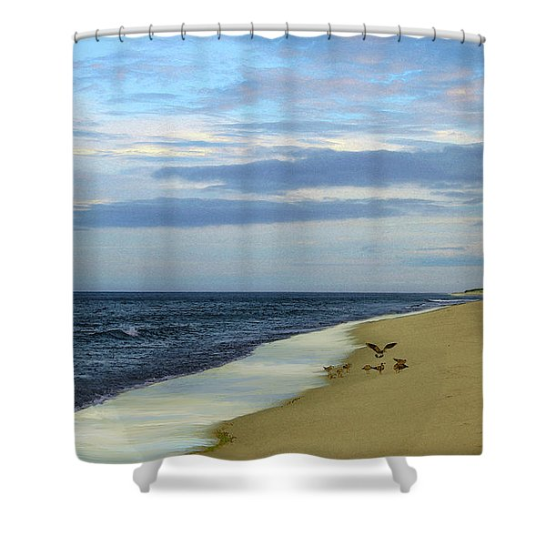 Lonely Cape Cod Beach Shower Curtain