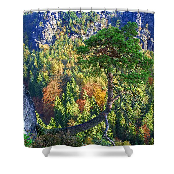 Lonely Tree In The Elbe Sandstone Mountains Shower Curtain