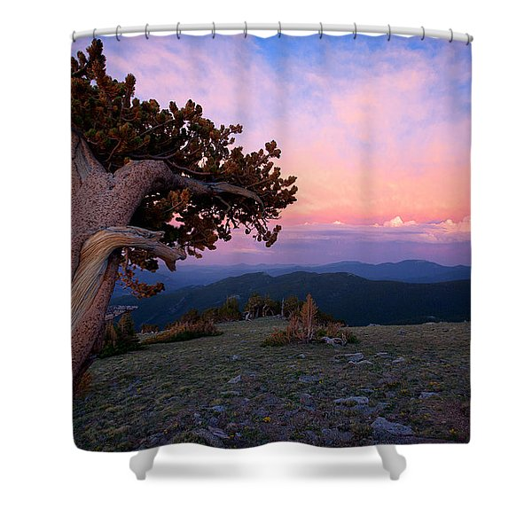 Lonesome Pine Shower Curtain