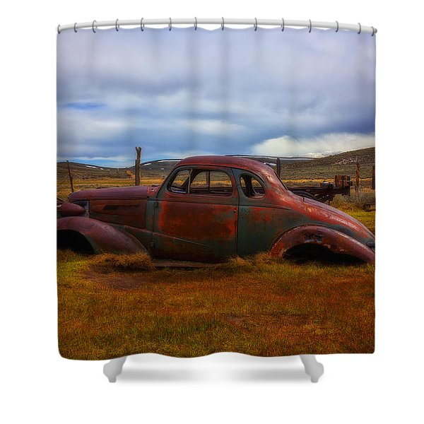 Long Forgotten Shower Curtain