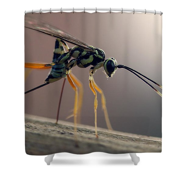 Long Legged Alien Shower Curtain