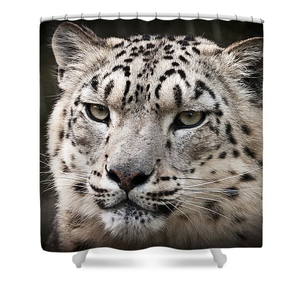 Look Into My Leopard Eyes Shower Curtain